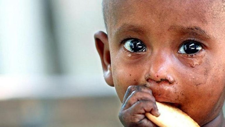 United Nations: Global Hunger on Increase