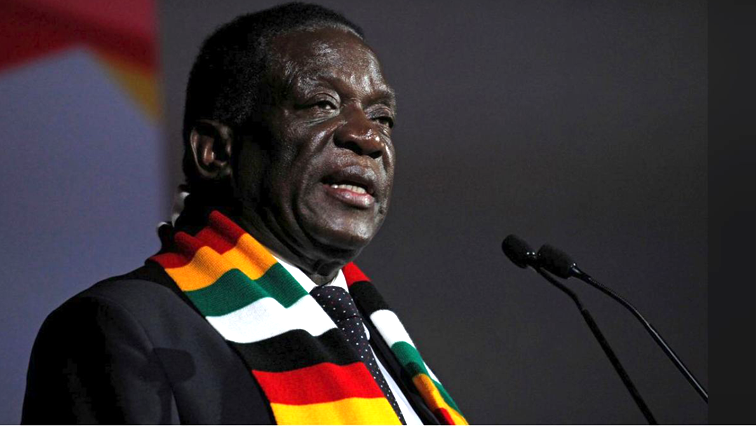 Erica Ndewere challenges President Mnangagwa's removal